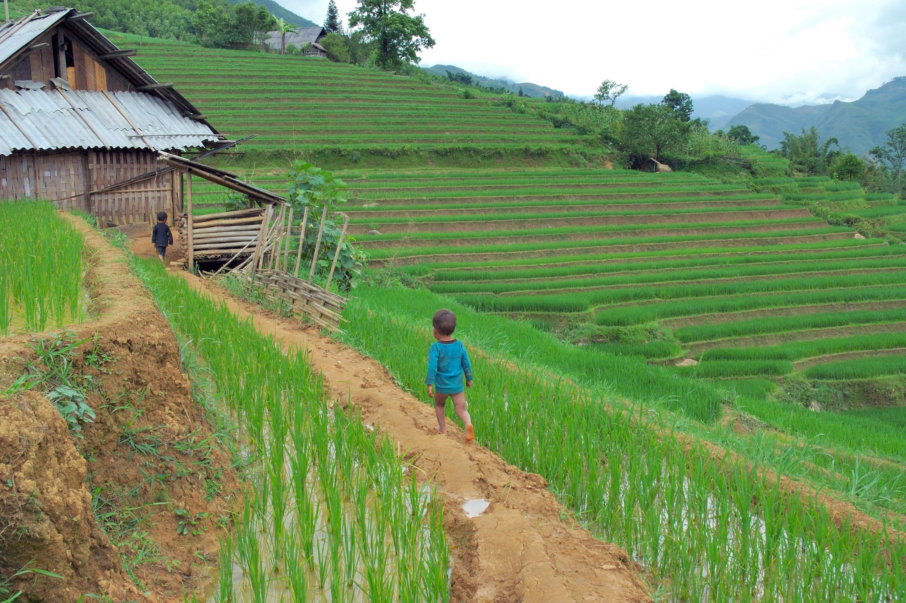 La Credenza Del Contadino Ruoti : Larcobaleno delle genti e dei mercati del nord kel 12 cultura